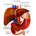Sỏi đường mật trong gan có nguy hiểm không?
