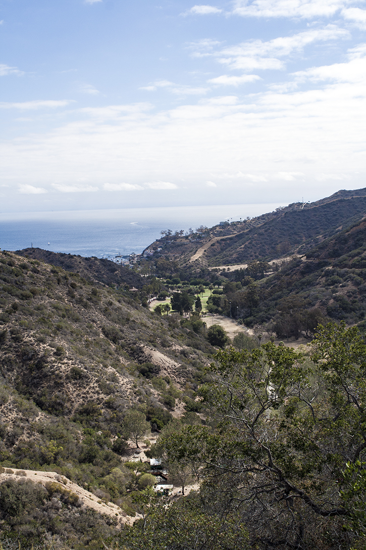 Hermit Gulch Trail, Hermit Gulch Campground, Hermit Gulch, Avalon, Avalon Port, Catalina Island