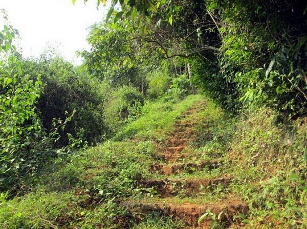 Tien Phi Cave: A Beautiful Landscape In Hoa Binh 2