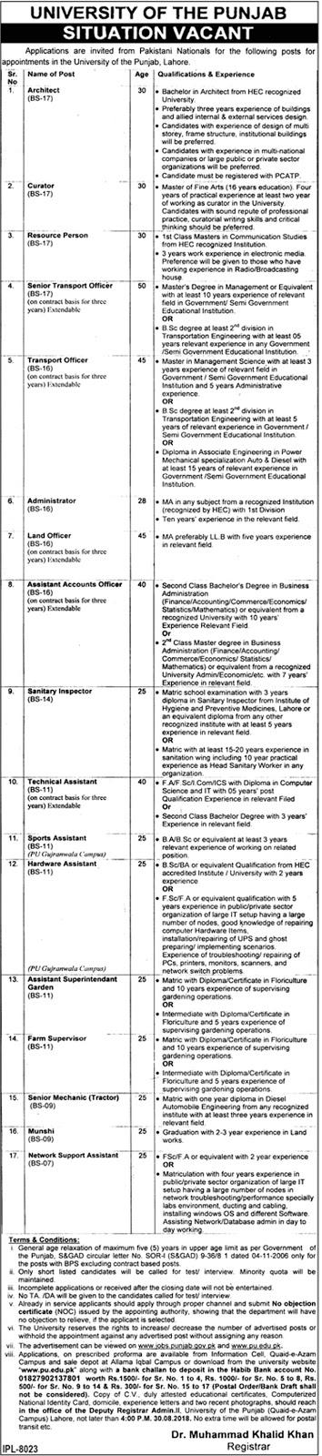 PU August 2018 Jobs, University of Punjab