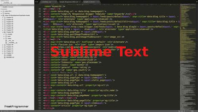Editor Teks untuk Programmer