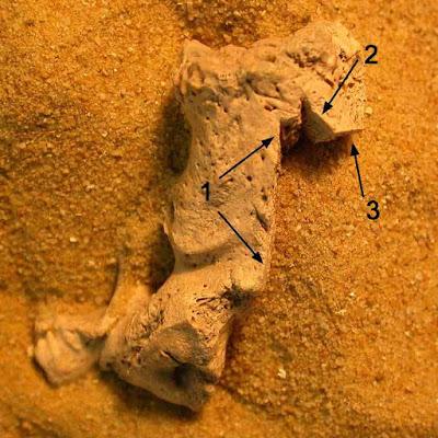 Γιατί χωρικοί στη μεσαιωνική Αγγλία ακρωτηρίαζαν ή έκαιγαν σορούς νεκρών