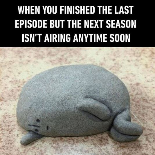 when you finished the last episode