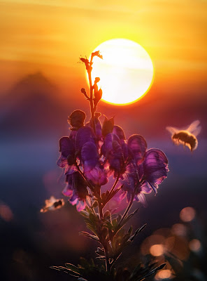 Close up of a purple flower with the sun in the background and a bee approaching. Photo by Simon Matzinger on Unsplash.