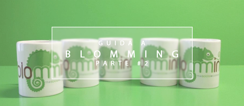 Guida shop online: Blomming - parte seconda -