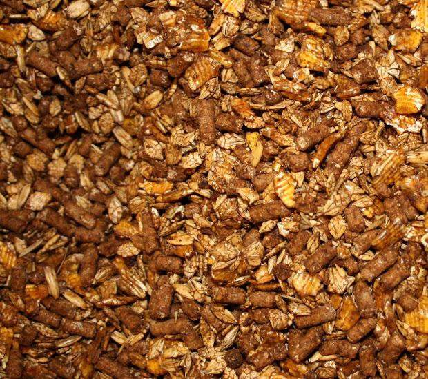 Grain Sweet Feed for Horses
