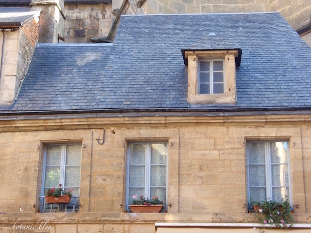 french-house-blue-slate-roof
