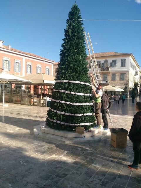 Το Χριστουγεννιάτικο δέντρο του Δήμου Ναυπλιέων τοποθετήθηκε στην πλατεία Συντάγματος