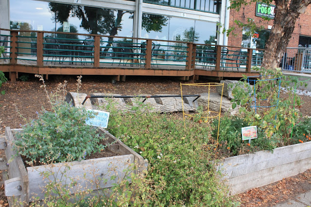 Community garden at Freight House Farmers Market