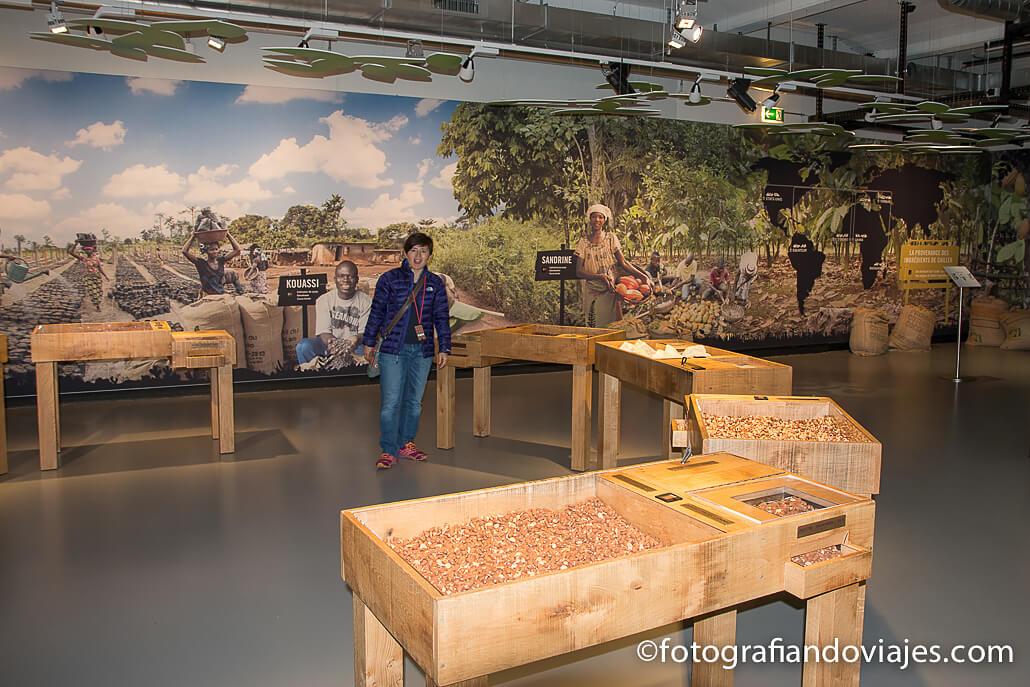 Museo de chocolate