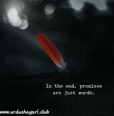 In the end, promises   are just words...!! urdushayari.club