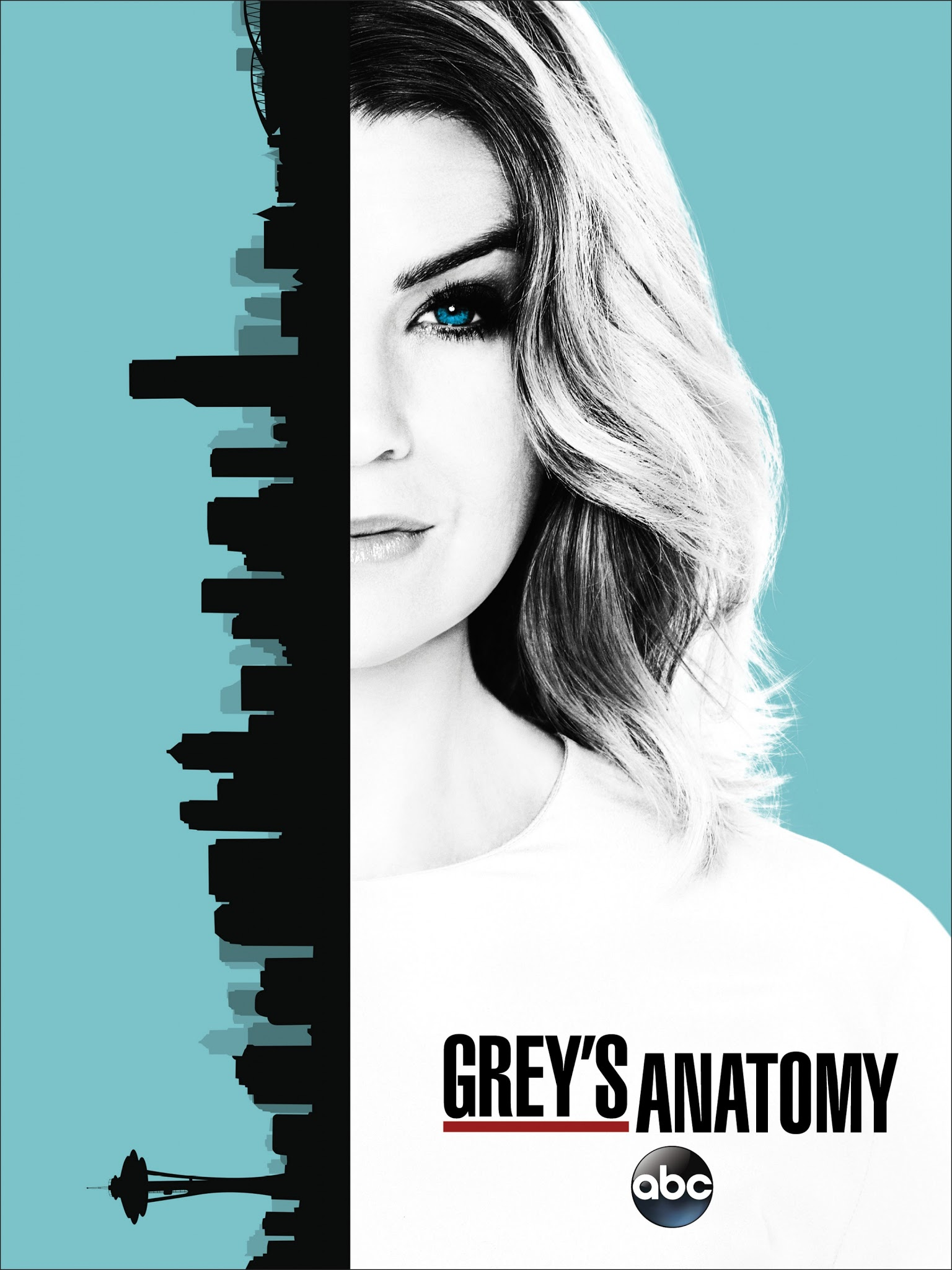 Poster de GREY\'S ANATOMY (13ra Temporada) ~ JPosters