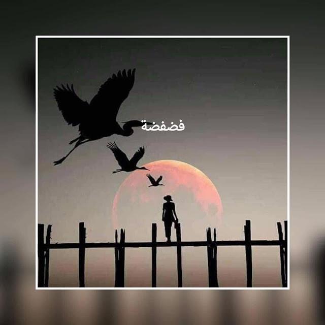 فضفضة مع ريهام مصطفى