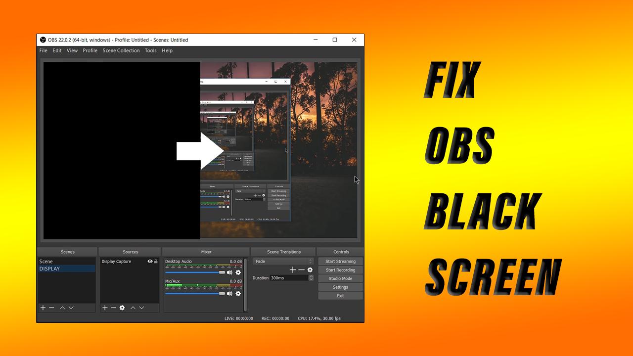 🐈 Obs black screen display capture | HOW TO FIX OBS BLACK SCREEN