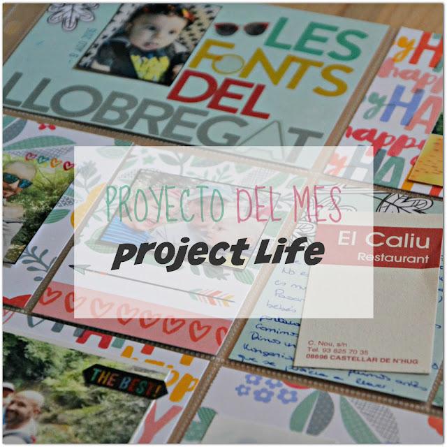 http://www.fiebredescrapbook.com/2016/10/proyecto-del-mes-project-life-1a-parte.html
