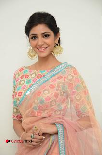 Actress Priyanka Bharadwaj Pictures in Saree at Mister 420 Press Meet  0011.JPG