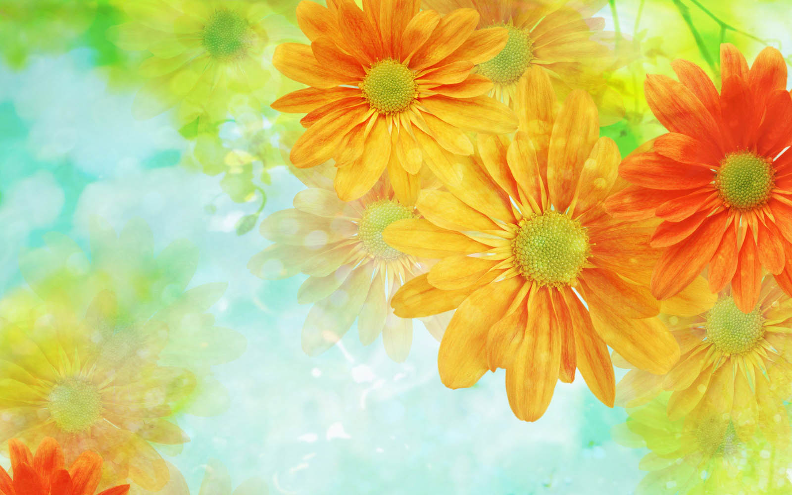 XS Wallpapers HD: Flower Art Wallpapers