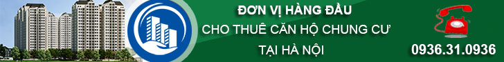 banner-thue-can-ho-dolphin-plaza