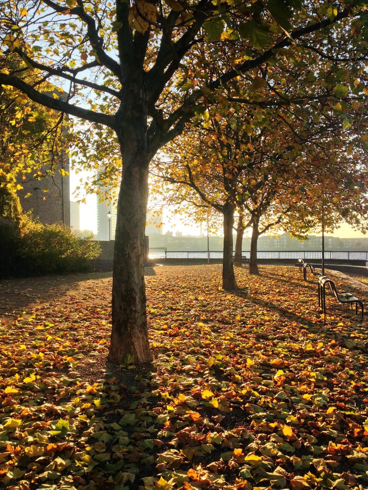 Vintagevelvets Happy Autumn 2013 22 Stunning