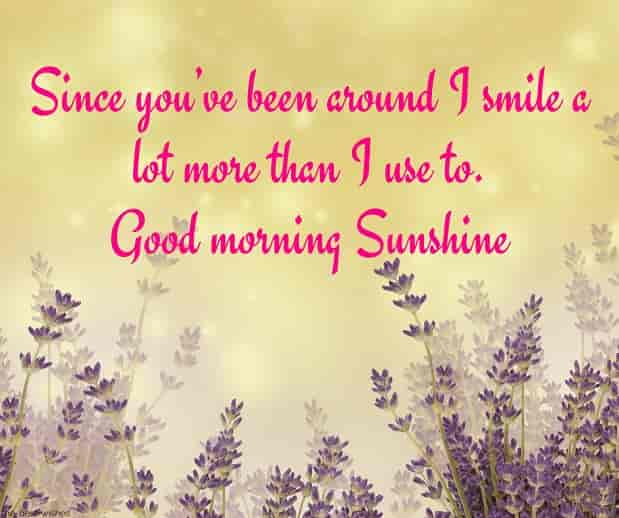 good morning sunshine quotes and images