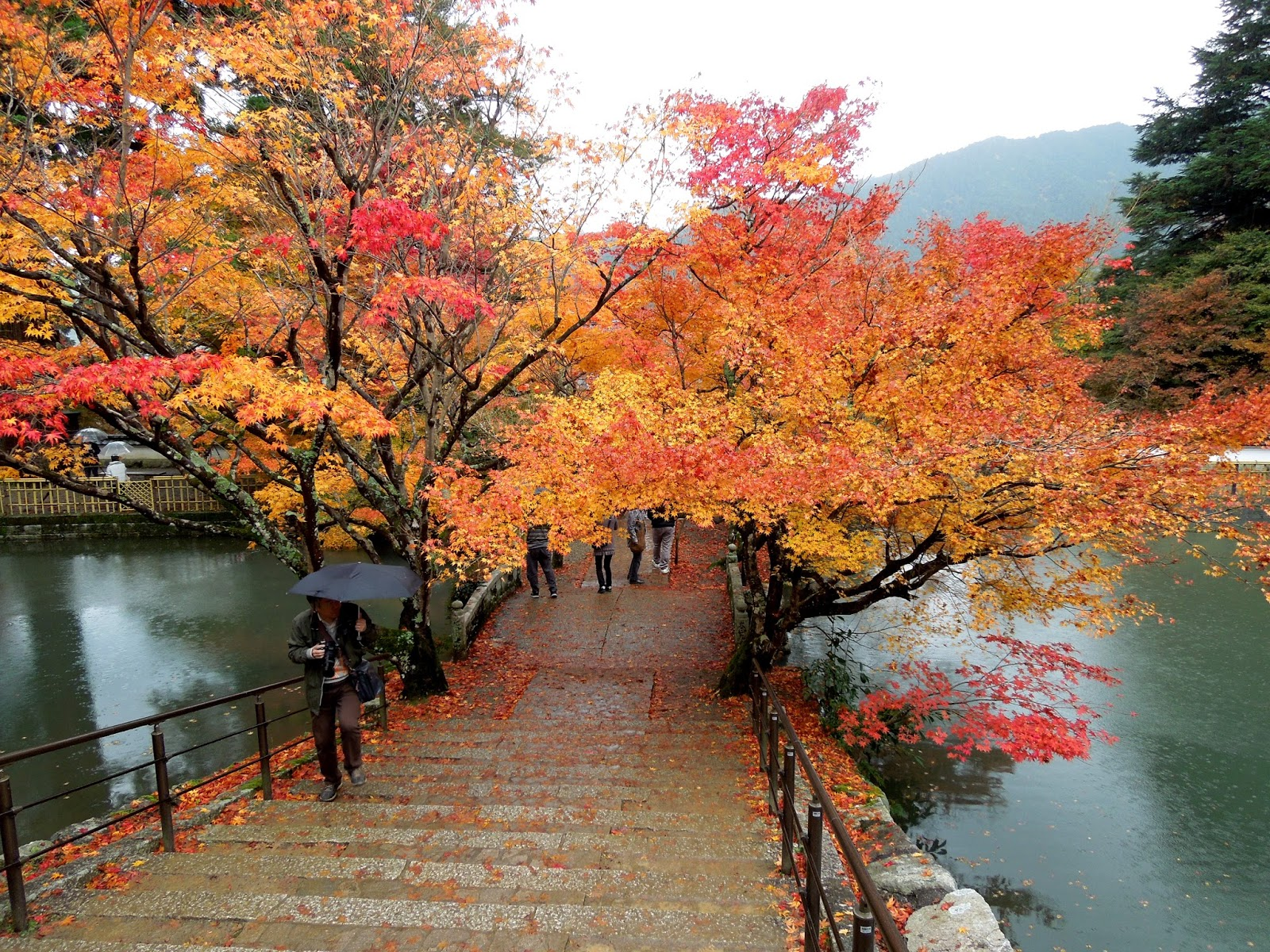 Gambar Wallpaper Pemandangan Jepang  Gudang Wallpaper