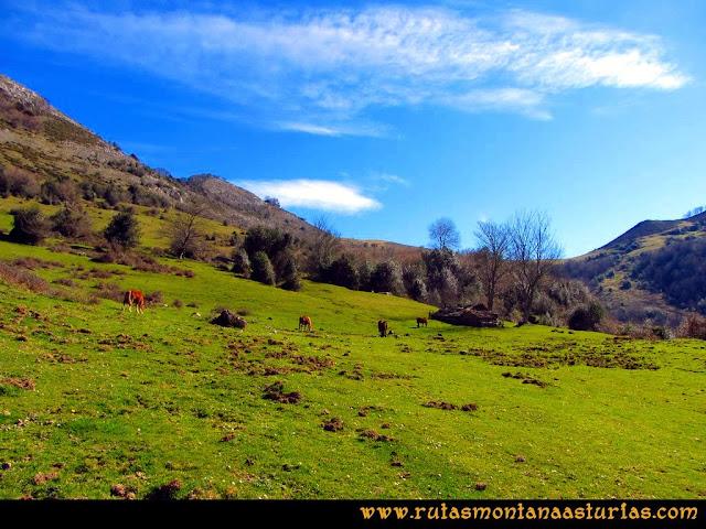 Ruta Pico Vízcares: Majada Cureñu