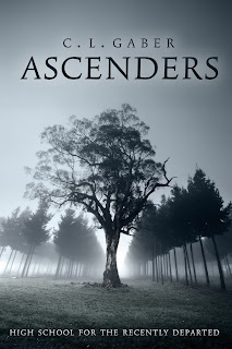 https://www.goodreads.com/book/show/25392606-ascenders