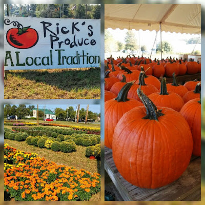 pumpkin patch, Rick's Produce, fall decor, frozen charlottes, baby boo pumpkins