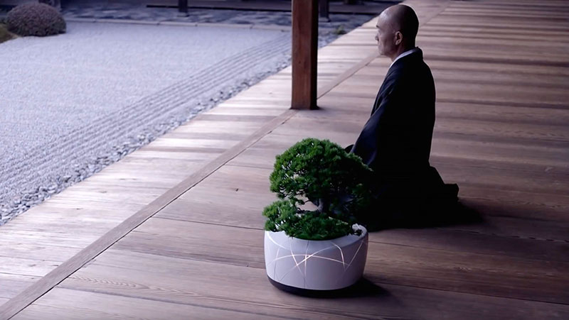 ae8dcb58f6a06 BonsAI  An Interactive Bonsai Plant by TDK