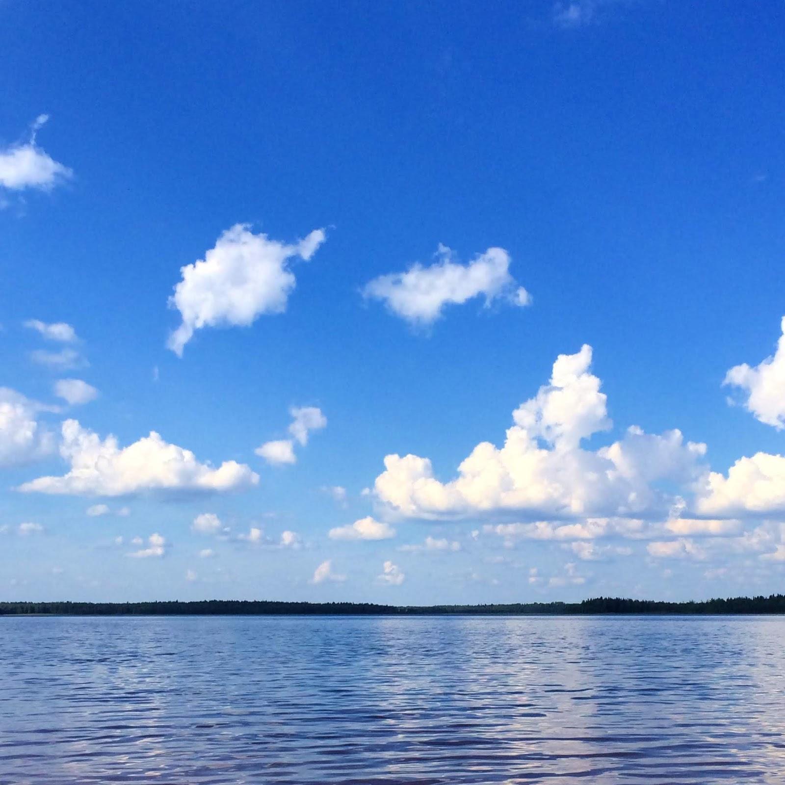 blogi, bloggaaminen, bloggaja, kirjoittaminen, Rouva sana, Tuusulanjärvi