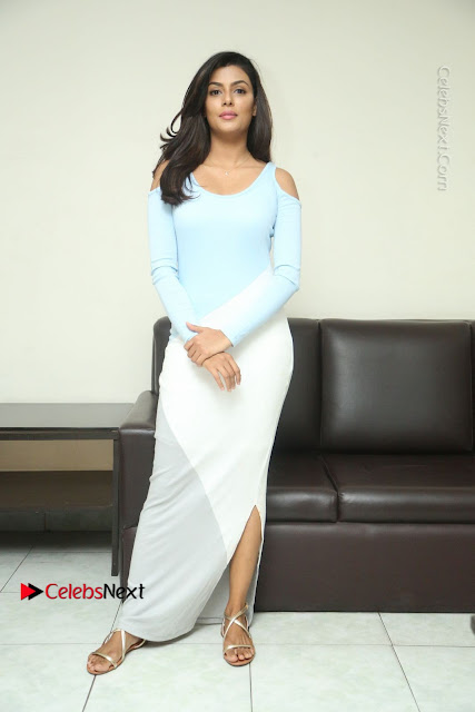 Anisha Ambrose Latest Pos Skirt at Fashion Designer Son of Ladies Tailor Movie Interview .COM 0620.JPG