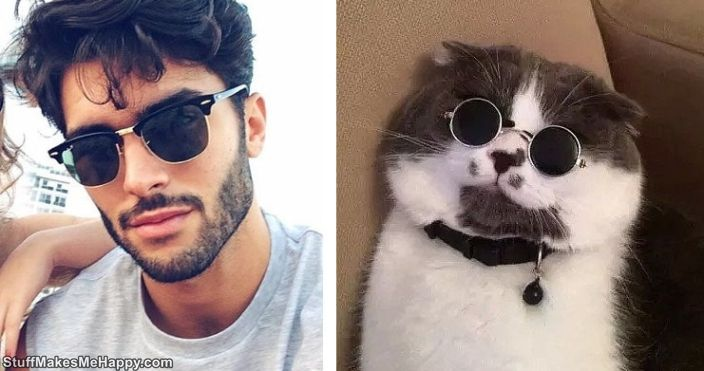 Funny Collages Cats vs men