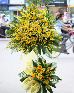 Chọn hoa chuc mung khai truong dep