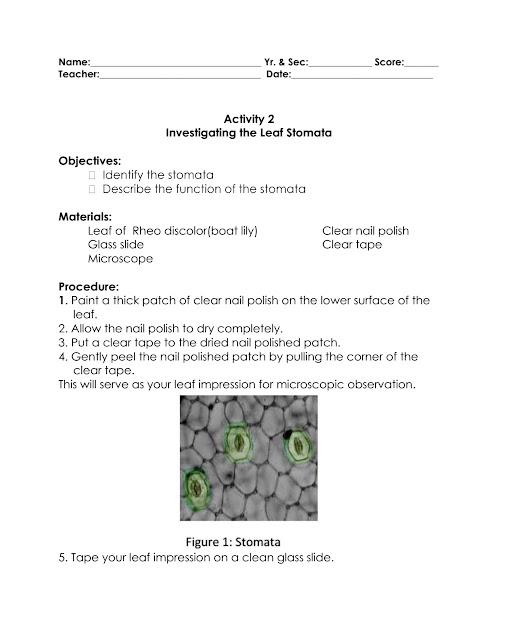 investigating science 9 pdf free