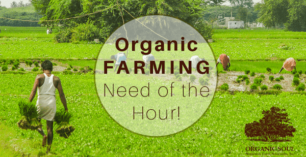 How to Start an Organic Farming or Its related Business in Hindi