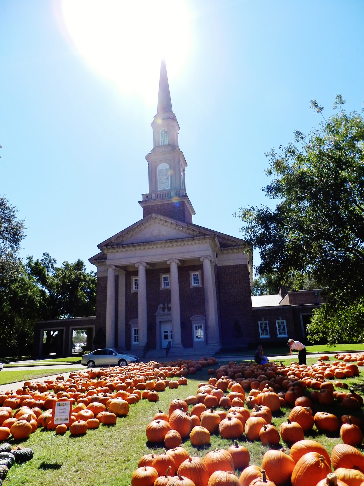 Houston Living: The Great Pumpkin! | Dear Polia
