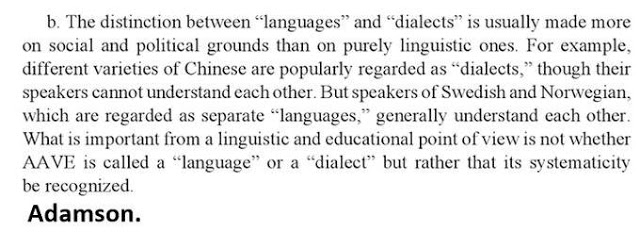 fluixet en Lingüística, un canalla o les dos coses