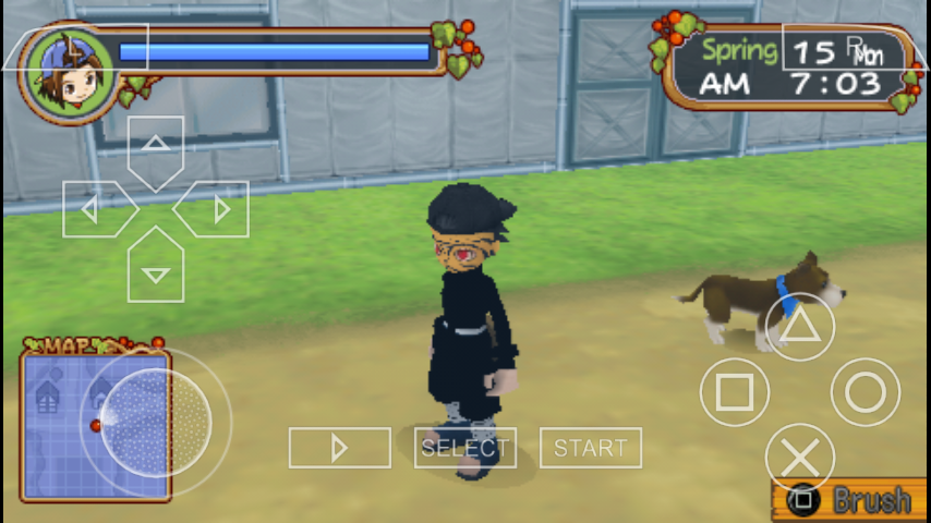 Download Mod Texture Player Character ( Masked ) Harvest Moon PSP | MyGames.generasi.net