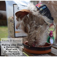 Review & Giveaway: Making your Dog a Homemade Meal with Dr. Harvey's Canine Health