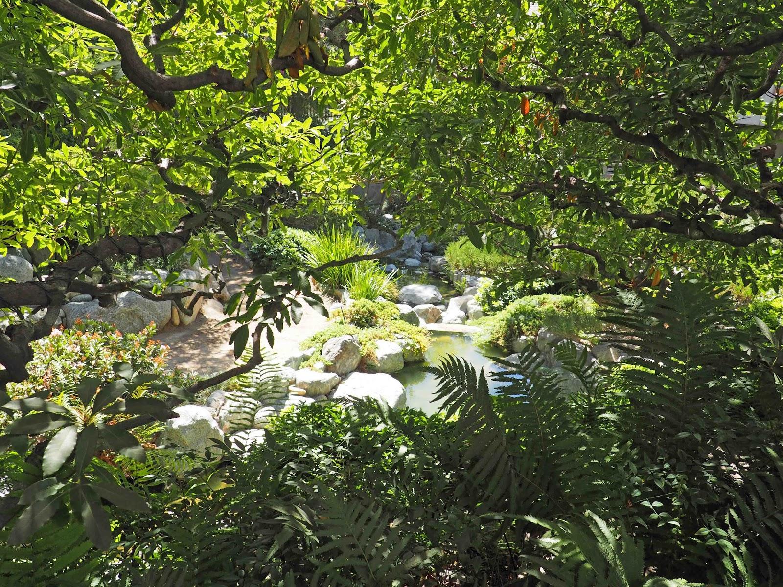 THE HOLLYWOOD WALKER: James Irvine Japanese Garden