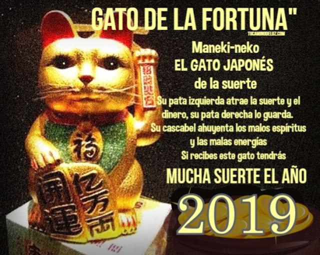 Gato japonés de la suerte 2019