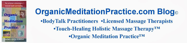 Organic Meditation Practice • Vegan Diet Detox • Massage Therapy • Reiki • Bodytalk • 305.788.3093