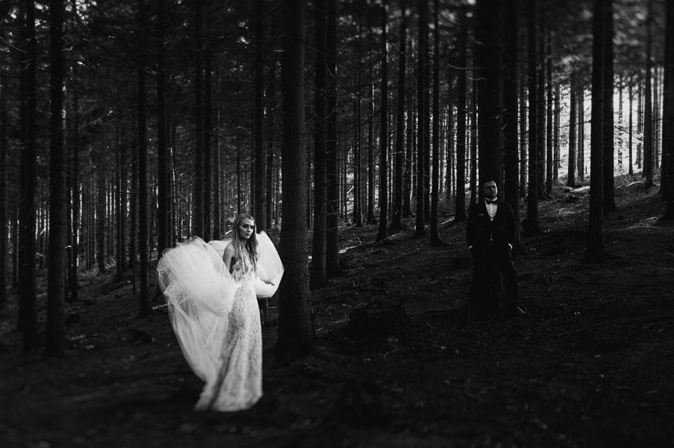 plener w lesie