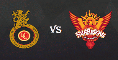 RCB vs SRH IPL 2017 Match 29