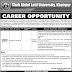 Shah Abdul Latif University Khairpur Jobs