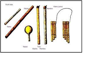 Instrumentos Musicales Tipicos De Colombia