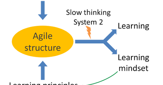 Agile structure is the panacea for learning in organizations and so for agility
