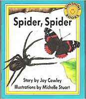 https://www.edventurebooks.net/products/spider-spider-by-joy-cowley