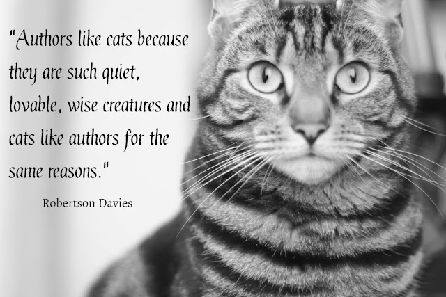 cats like authors because they are such quiet, lovable, wise creatures and cats like authors for the same reasons.