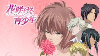 TOP 10 Los mejores animes de Harem Inverso